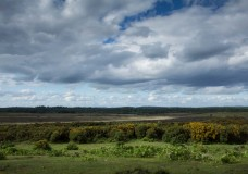 In Search of a Vista – Across Hincheslea Moor