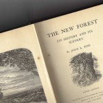 The New Forest – J R Wise